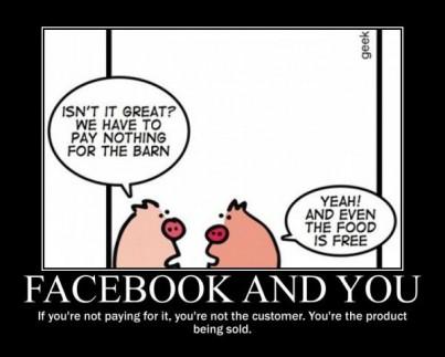Facebook Demotivational